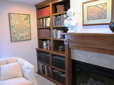 Bookcase and Fireplace